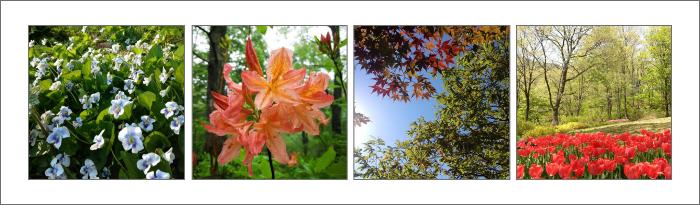 四季の庭エリア
